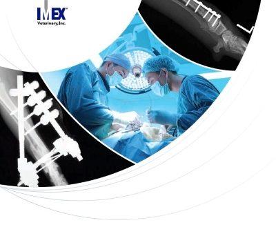 IMEX 2019 Catalogue